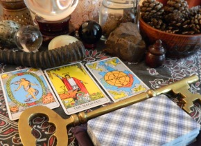 Animal Card & Tarot Readings Are Now Available