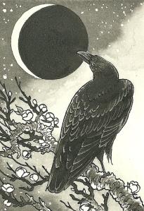 fancy crow - 300