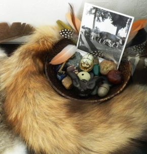 Delving Deeper Into Animal Divination
