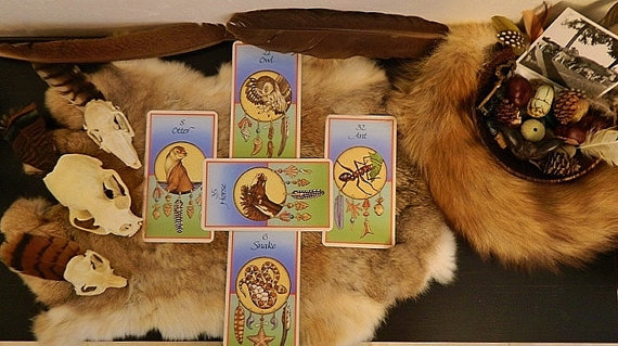 Animal Card Reading